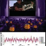 Neurocinematics: Your Brain on Film